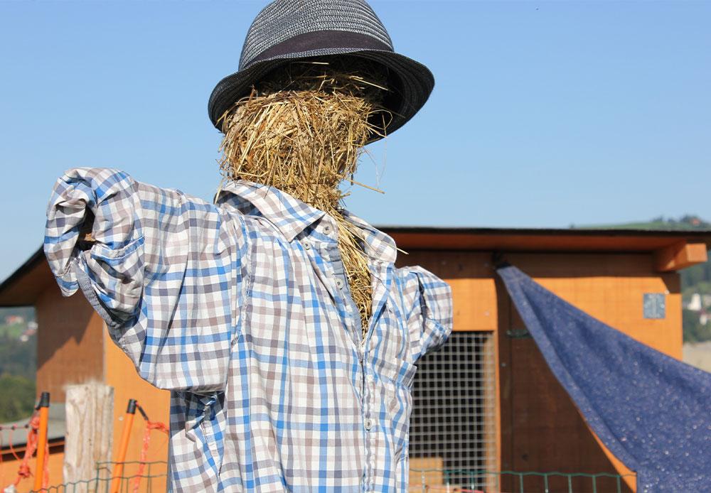 Vogelscheuche auf dem Bauernhof