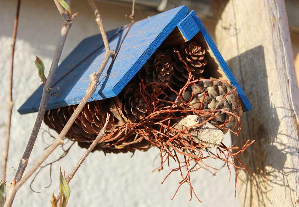 Vogelhaus basteln beim Urlaub auf dem Bauernhof